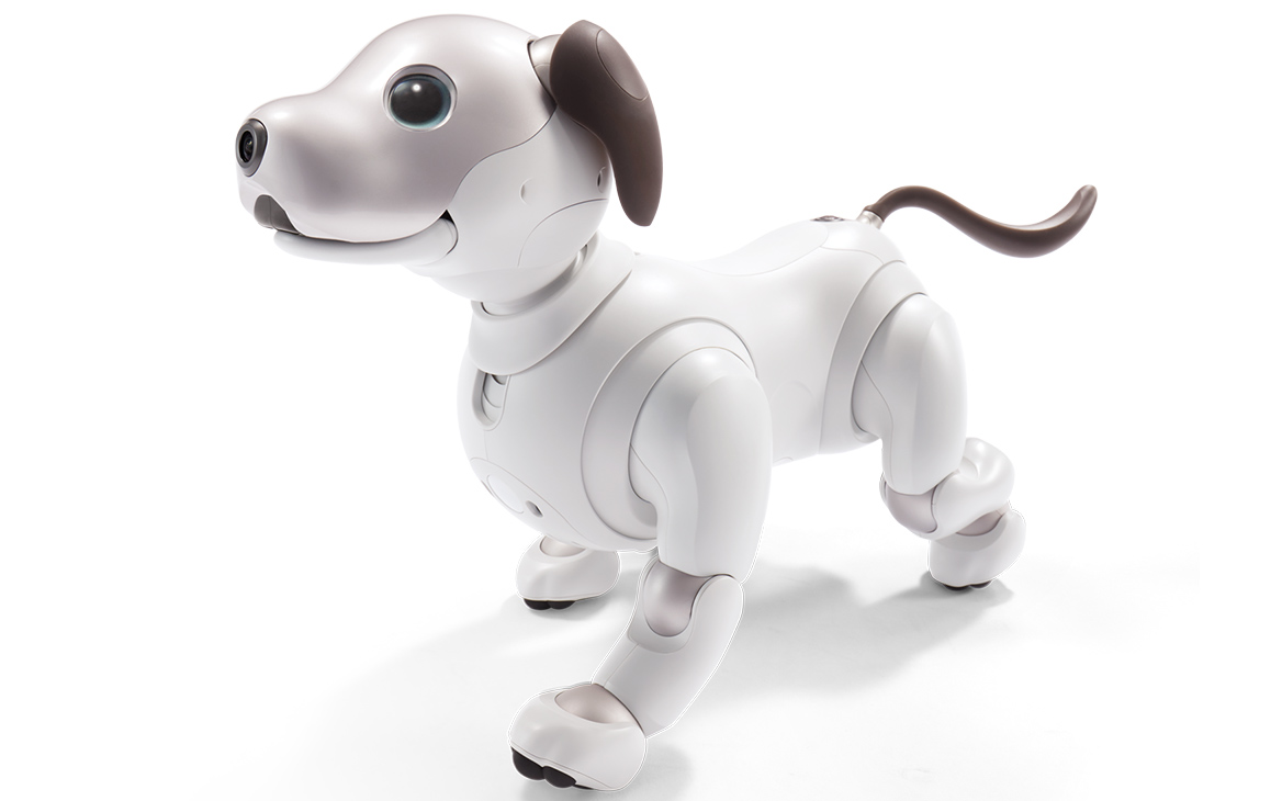 In the United States will start selling AIBO, the puppy robot
