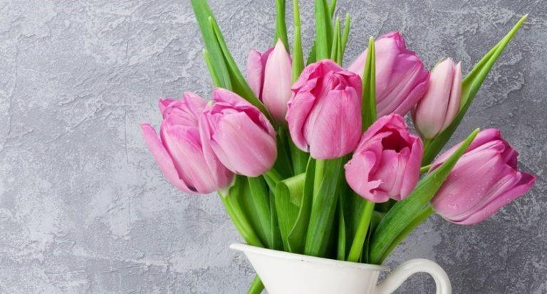 Сегодня в России День Матери!