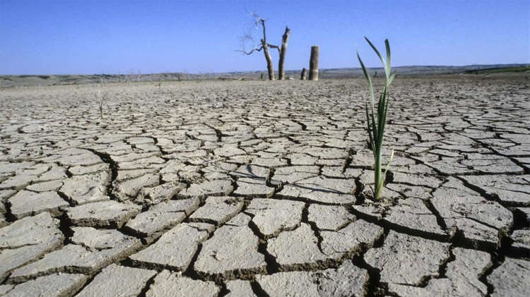 Земля столкнётся с невиданными катаклизмами уже к 2050 году