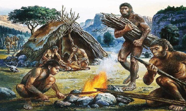 Первую технологическую революцию предки человека совершили 400 000 лет назад